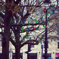 Décorations de Noël - place Gambetta - Bordeaux