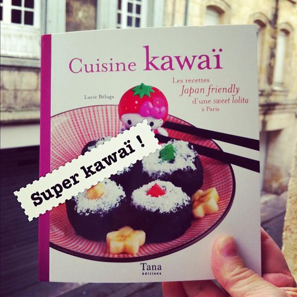 À reçu un livre trop kawaï avec @luciebeluga dedans !  Un livre pour lolitas Japan friendly ;)
