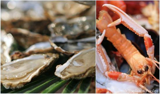 Huîtres et langoustine