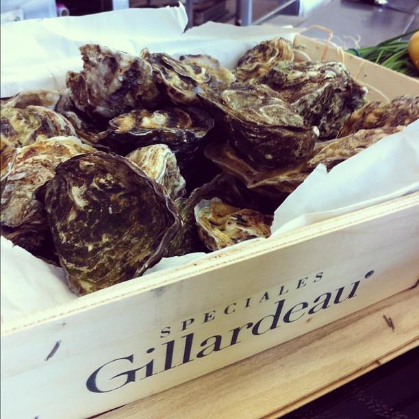 Huîtres Gillardeau #lcde