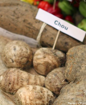 Chou (exotique)