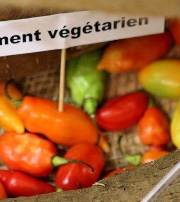 Piments végétariens