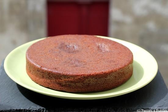 Gâteau au chocolat sans gluten
