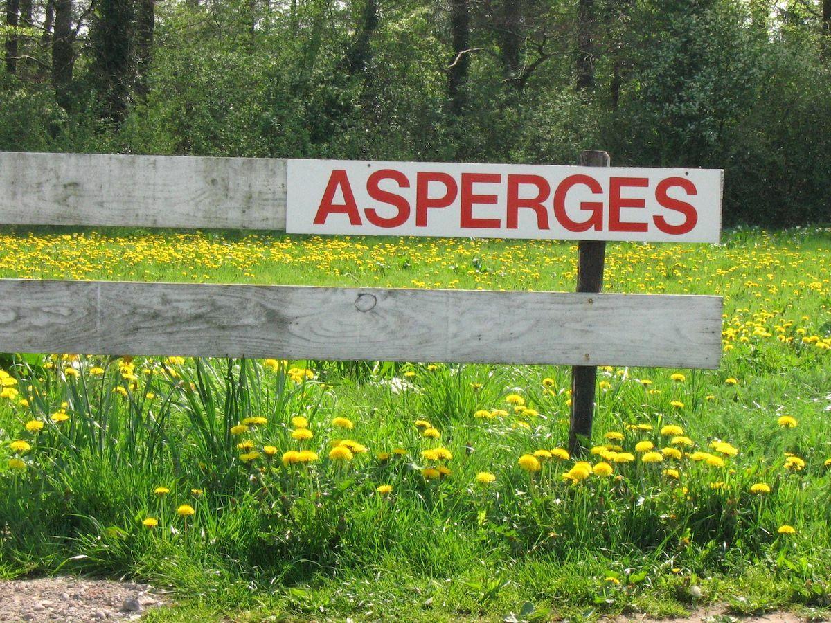 Panneau asperges©jaydot