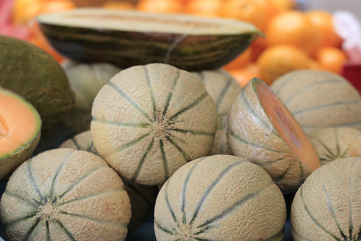 Melon Charentes © R. Maximilian shutterstock