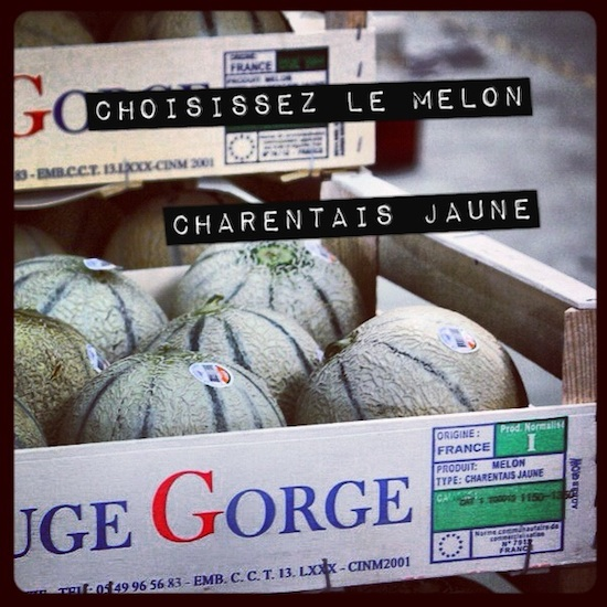Melon charentais jaune
