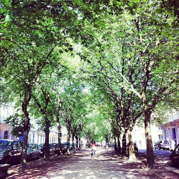Cours Arnozan - Bordeaux
