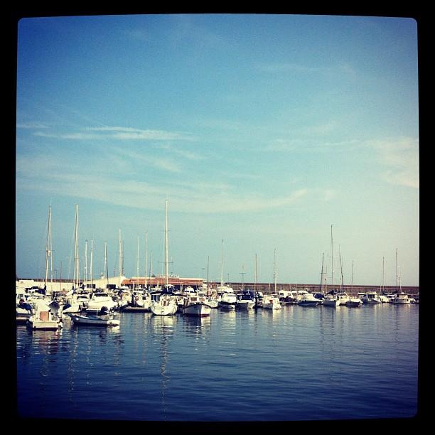 Le port Palamos