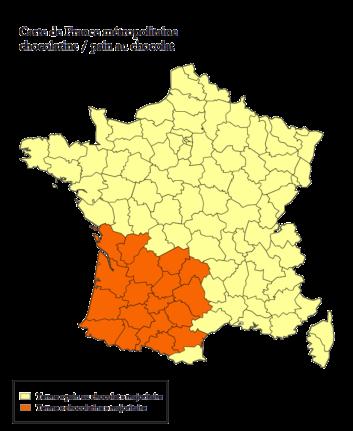 Carte de France Métropolitaine Chocolatine vs Pain au chocolat
