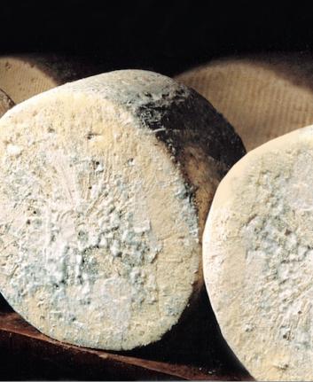 Fromage bleu d'Auvergne