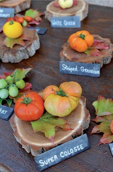 Tomates Château de la Bourdaisière