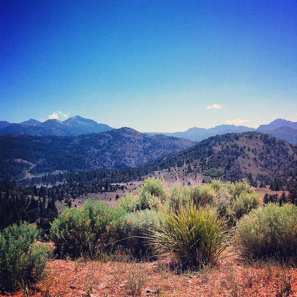 Sur la route pour le Yosemite