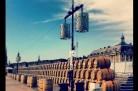 Bordeaux Fête le Vin - Barriques