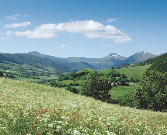 Cantal - Paysage