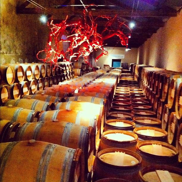 Château Kirwan - chai de deuxième année #bordeaux #margaux #médoc #wine #vin