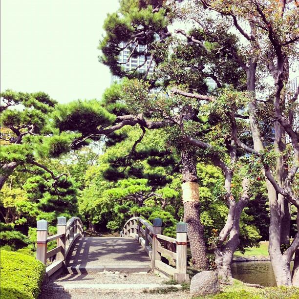 Hamariku #tokyo (signifie petit Chateau au bord de la mer)