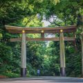 Entrée du temple Meiji-jingu Tokyo © Bule Sky Studio. shutterstock