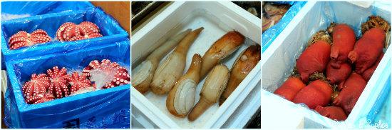 Tako (Poulpe), Miru-gai (une sorte de coquillage souvent dégusté comme sushi), Hoya