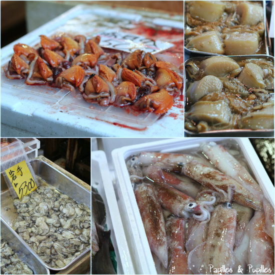 Sur les étals de Tsukiji