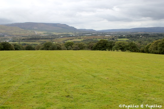 Terroir - Pays de Galles