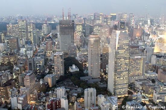 Vue de Tokyo, depuis la Tokyo Tour