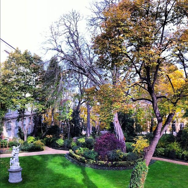Après midi d'automne #paris