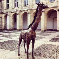 Rencontre inattendue - cours Mably - Bordeaux