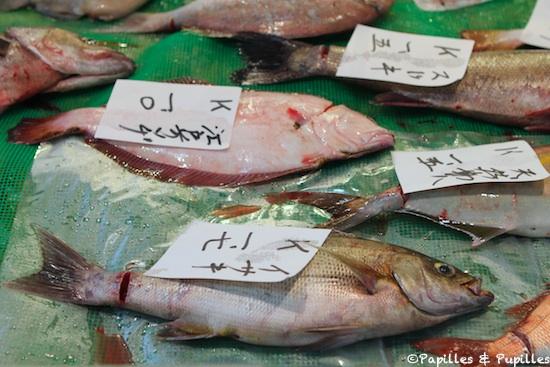 Celui qui est légèrement rouge est un Karei : Limande, sorte de Turbot. En bas se trouve un Isaki, un poisson blanc qui ressemble au bar et que l'on déguste grillé au sel. En haut à droite, un Suzuki (bar)