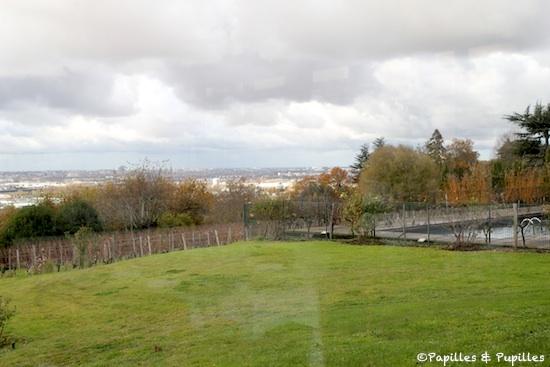 Vue sur Bordeaux, depuis le Saint James
