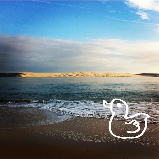 Dune du Pyla (Pyla dune)