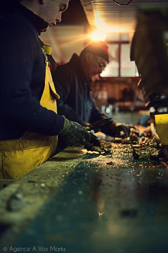 Calibrage des huître au Routioutiou