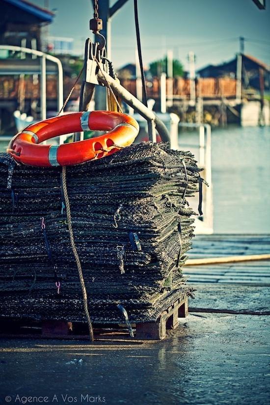 Filets à Huîtres, Port de Larros, Gujan Mestras ©A Vos Marks