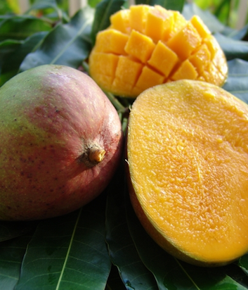 Mangues julie ©Caribfruits