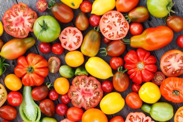 Différentes variétés de tomates ©Shebeko shutterstock