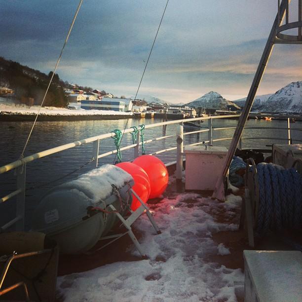 En bateau dans le Fjord #Norvège - retour de pêche