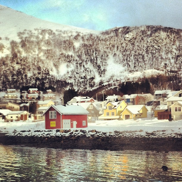 Myre #Norvège