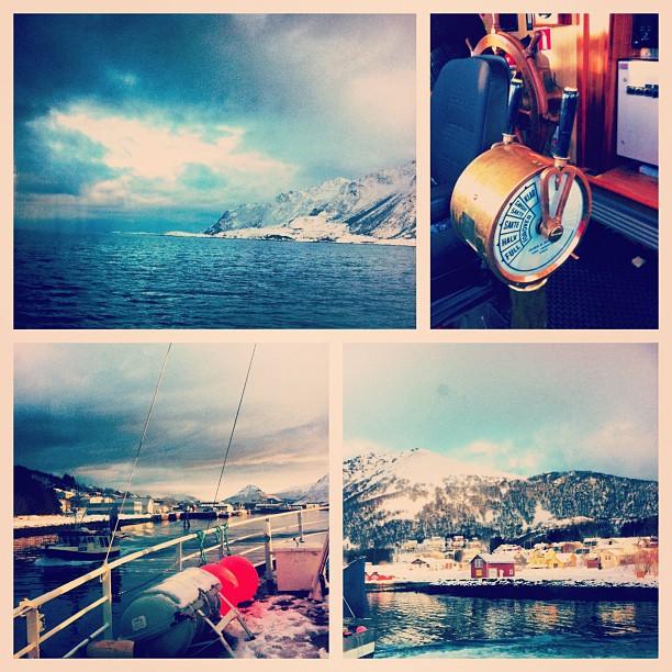 Pêche au skrei à Myre, Norvège - le skrei est le cabillaud haute qualité