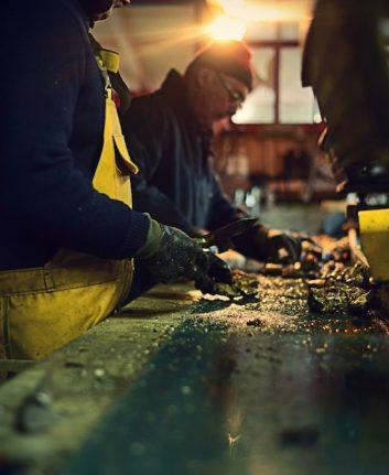 Calibrage des huîtres - Routioutiou - Gujan Mestras ©AVosMarks