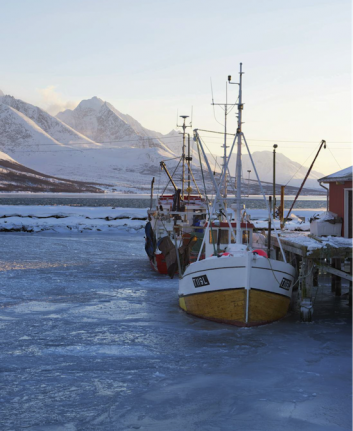 Pêche au Cabillaud - Norvège
