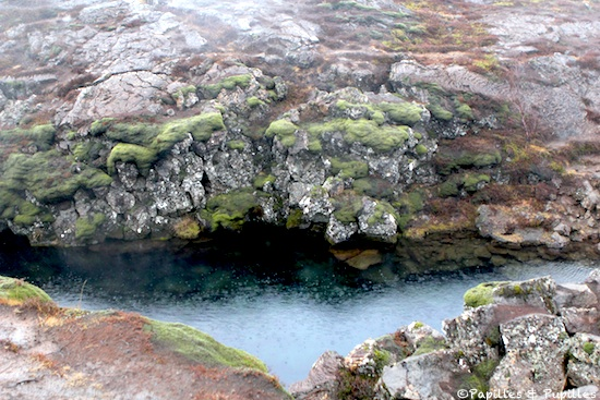 Spot pour plongée