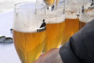 Bière - De la fabrication à la dégustation
