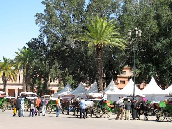 Calèches - Place Jemaâ el Fna