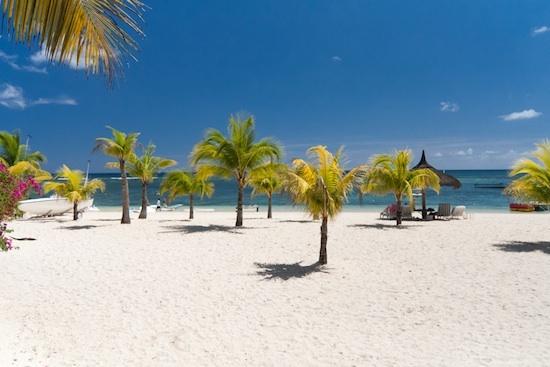 Plages et Palmiers - île Maurice
