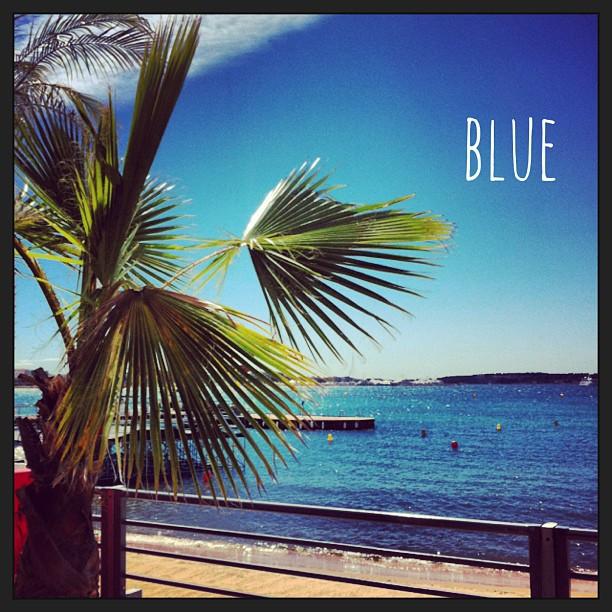 Bleu des mers du sud, Cannes