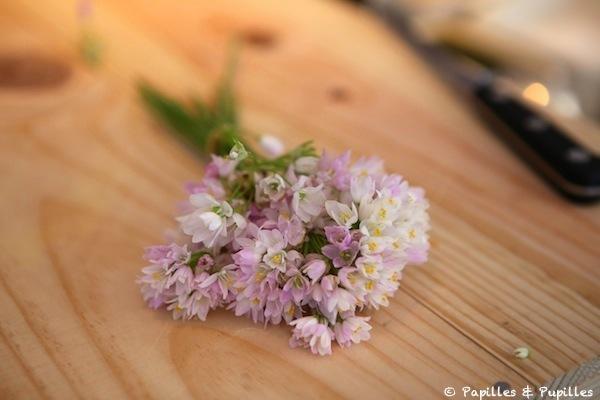 Fleurs d'ail