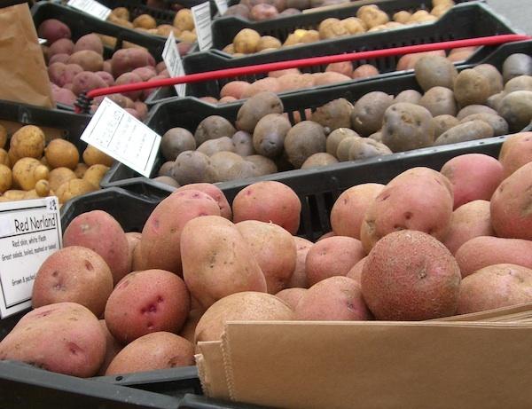Pommes de terre ©laurenipsum Licence CC BY-NC-SA 2.0