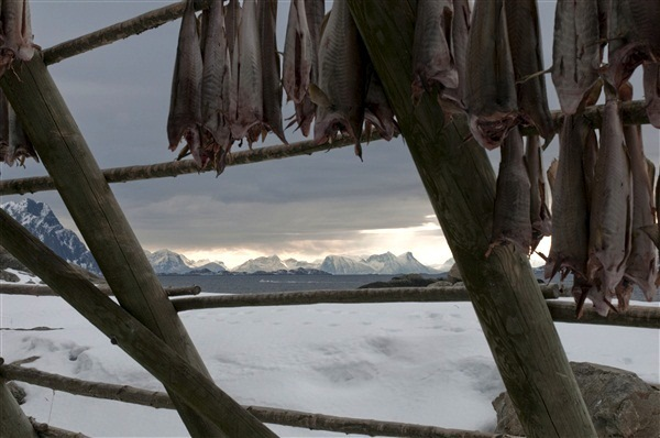 Stockfish CH: - Visitnorway.com Credits-Innovation Norway Photographer C H