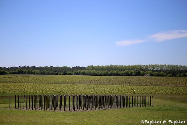Vignes Château Guiraud