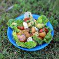 Salade melon mozzarella avocat