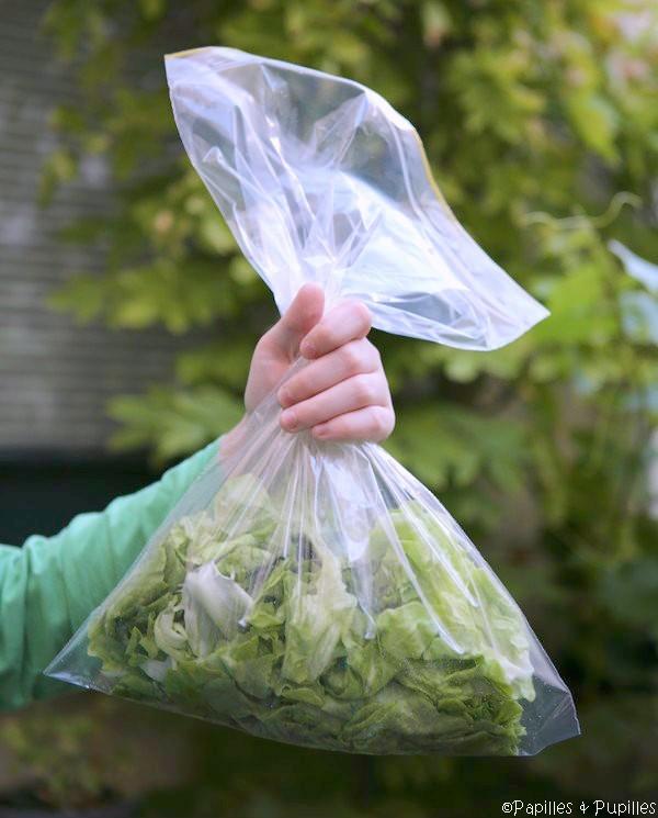 Comment garder de la salade